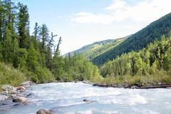 Russia, Republic of Altai. Very beautiful pictures of nature in Altai High snow-capped mountains, fast, noisy mountain rivers, bea Royalty Free Stock Photo