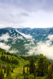 Altai, Siberia Royalty Free Stock Photo