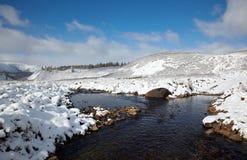 Altai sotto neve Fotografie Stock Libere da Diritti