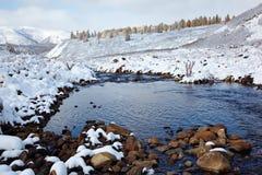 Altai sotto neve Fotografia Stock