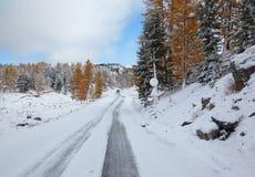 Altai sotto neve Fotografie Stock