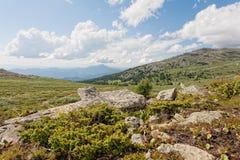 Altai, Suberia Fotografia Stock
