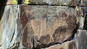 altai Tratti Kalbak-Tash dei petroglifi Fotografia Stock Libera da Diritti