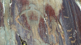 altai Tratti Kalbak-Tash dei petroglifi Immagini Stock