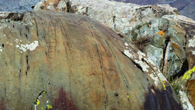 altai Tratti Kalbak-Tash dei petroglifi Fotografia Stock