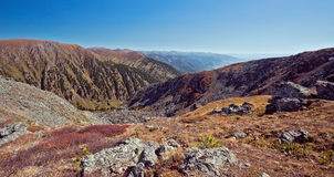 Altai valley in autumn Stock Image