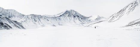 altai wschodnia gór panorama sayan obraz royalty free