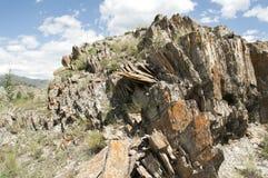 Altaibergen en steppe Stock Foto