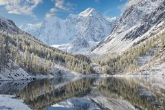 Altaibergen, Rusland, Siberië royalty-vrije stock foto's
