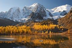 Altaibergen, Rusland, Siberië royalty-vrije stock fotografie