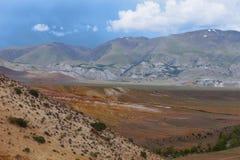 altaidagar sist bergsommar Härlig höglands- liggande Ryssland Arkivfoton