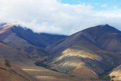 altaidagar sist bergsommar Härlig höglands- liggande Ryssland siberia Arkivfoton