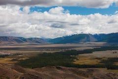 altaidagar sist bergsommar Härlig höglands- liggande Ryssland siberia Royaltyfria Foton