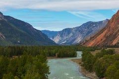 altaidagar sist bergsommar Härlig höglands- liggande Ryssland siberia Royaltyfria Bilder