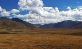 altaidagar sist bergsommar Härlig höglands- liggande Ryssland siberia Arkivbilder