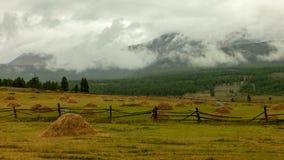 altaidagar sist bergsommar Härlig höglands- liggande Ryssland Sibirien Timelapse arkivfilmer