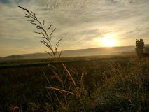 altaifältrussia soluppgång Royaltyfri Bild