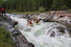 Altairepubliek Het extreme rafting op de Bashkaus-Rivier stock afbeelding