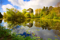 Altamont-Garten Stockfotos