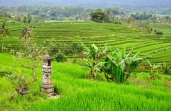Altar in famous Jatliluwih rice paddy in Bali Royalty Free Stock Photo