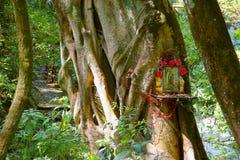 Altar in nature I. Natural national park barranca del cupatitzio, uruapan michoacan, mexico Stock Photos