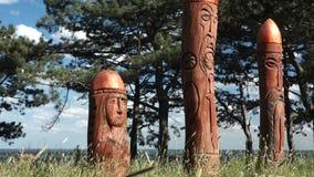 Altar pagano real en el bosque con los ídolos en luz del verano almacen de metraje de vídeo
