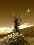 Altar tibetano da borda da estrada no sepia Imagens de Stock Royalty Free