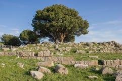 Altar von Zeus Stockbild