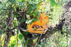 Altare della foresta di Bali Fotografia Stock