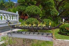 Altare per le candele Fotografia Stock