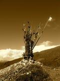 Altare tibetano del bordo della strada nella seppia Immagini Stock Libere da Diritti