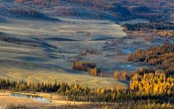 Altay Βουνά Χρυσό φθινόπωρο μπλε ουρανός στοκ φωτογραφία με δικαίωμα ελεύθερης χρήσης