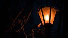 altay καλυμμένη οδός της Σιβηρίας νύχτας λαμπτήρων υγείας belokurikha θέρετρο Στοκ φωτογραφία με δικαίωμα ελεύθερης χρήσης