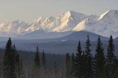 Altay Arkivfoto