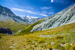 Altay Altai Royalty Free Stock Photography