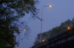 altay belokurikha健康闪亮指示晚上手段射击了西伯利亚街道 免版税图库摄影