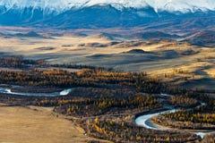Altay Berg Guld- höst blå sky Arkivbilder