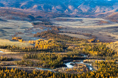 Altay Montanhas Outono dourado Céu azul Imagem de Stock