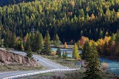 Altay Mountains e strada principale di Chuya in autunno, Repubblica di Altai Immagine Stock