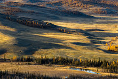 Altay. Mountains. Golden autumn. Blue sky. Royalty Free Stock Images