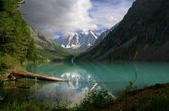 Altay, shavlameren, reis rusland Stock Fotografie
