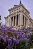 Altbau mit Spalten und purpurrote Blume im Vordergrund lizenzfreie stockfotos