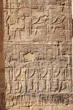 Alte ägyptische Hieroglyphen geschnitzt im Stein an Philae-Tempel in Assuan Ägypten lizenzfreie stockfotografie
