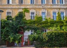 Alte überwucherte cracky Gebäudefassade mit einem Zaun Lizenzfreies Stockbild