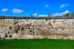 Alte überwucherte Wand Lizenzfreie Stockfotos