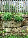 Alte Abteiwand mit Zaun Stockfoto