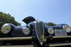 Alte Alfa Romeo-Autofront Lizenzfreie Stockfotografie