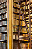 Alte antike Bücher Lizenzfreie Stockfotografie