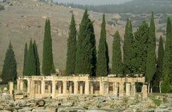 Alte antike Spaltenruinen von Hierapolis lizenzfreie stockbilder