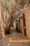 Alte arabische Stadtstraße Stockbilder